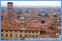 View over the roofs and Torre Guinigi Lucca