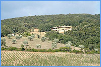 Bed and Breakfast in campagna tra Massa Marittima e la costa Maremma Toscana
