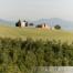 Piccola chiesa tra Pienza e S. Quirico d'Orcia Toscana