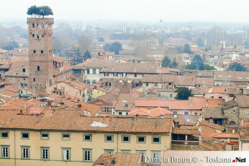 Blick auf die Altstadt Lucca mit dem Torre Guinigi