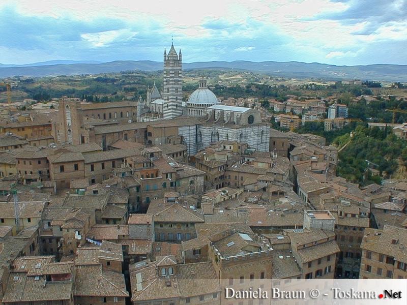 Blick vom Torre del Mangia auf das historische Zentrum von Siena
