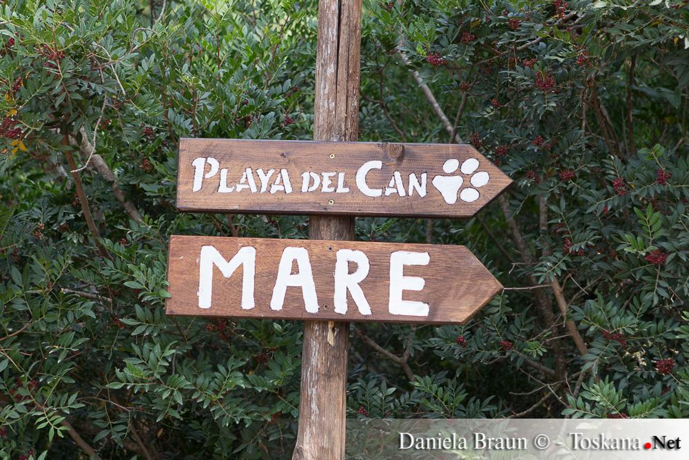 Hundestrände Toskana
