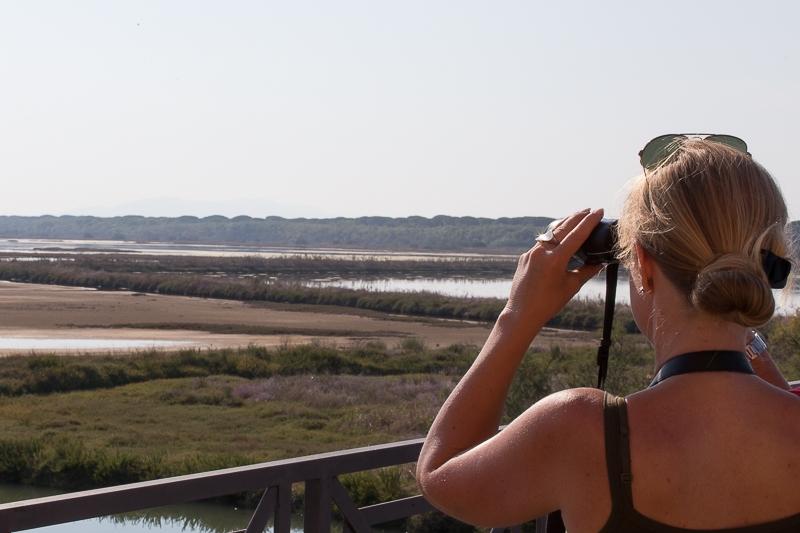 Birdwatching in der Diaccia Botrona Castiglione della Pescaia Maremma Toskana