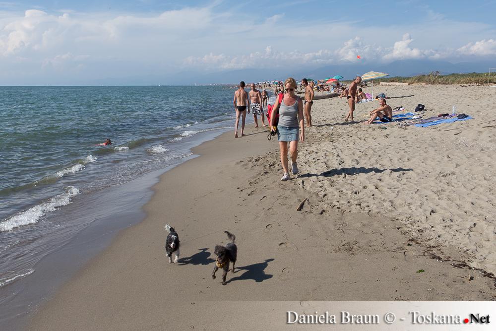 Marina di Vecchiano - Dog Beach002
