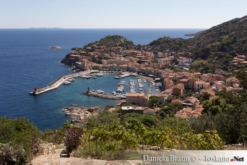 Blick auf Giglio Porto, Insel Giglio Provinz Grosseto Toskana