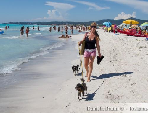 Spiagge Bianche – Die weißen Strände von Vada