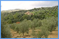 Casa Montecristo - Distant view over the house with hilltop village Roccastrada behind