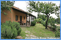 Il Ciliegio - Country Cottages and Holiday Apartments Sorano Maremma Tuscany