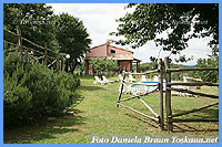 Il Ciliegio Sorano Maremma Tuscany - View over the pool and the building with the holiday apartments