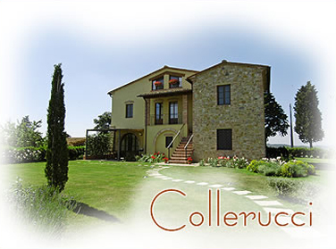 foto home collerucci