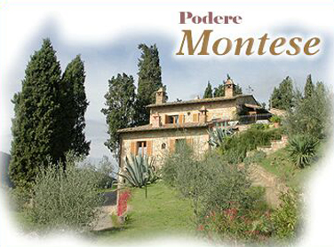 foto home podere montese