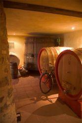 Fattoria di Corsignano - Cantina Vini Chianti Classico Toscana