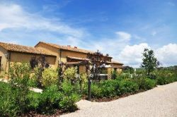 Podere Vignanova - Holiday Apartments Sea Etruscan Coast Tuscany
