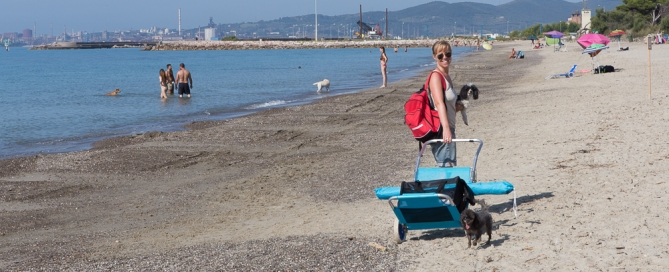 Piombino - Dog Beach Perelli011